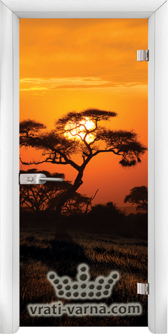 Print G 13 17 African Sunset W